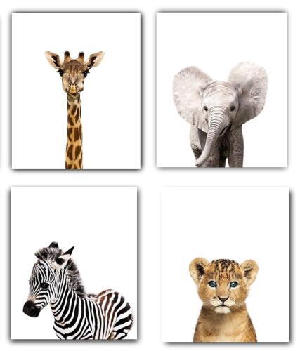 Safari Baby Animals Nursery Decor Art - Set of 4 UNFRAMED Wall prints