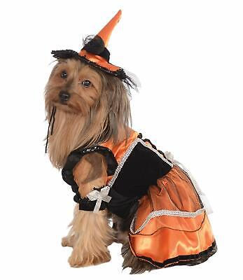 Orange Witch Wicked Gothic Cute Fancy Dress Up Halloween Dog Cat Pet Costume