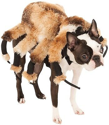 Pet Dog Cat Spider Scary Halloween Clothes Fancy Dress Costume Outfit  XS-XL (Scary Spider Dog Costume)