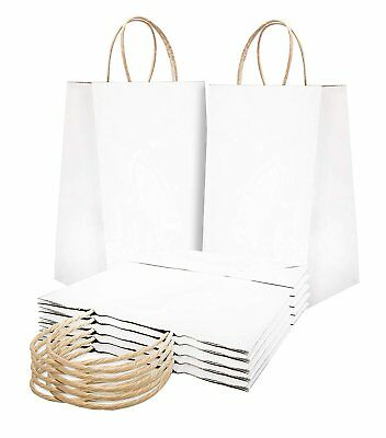 Paper Shopping Bags 10x5x13 Kraft Paper Bags.pack Of 25 White Retail Bags.