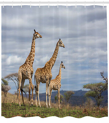 Wildlife Shower Curtain African Giraffe Family Print for Bat