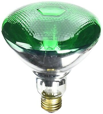 Green Reflector Floodlight (Home Accents Holiday GREEN Reflector FLOOD Light 100 Watt 130 Volt)