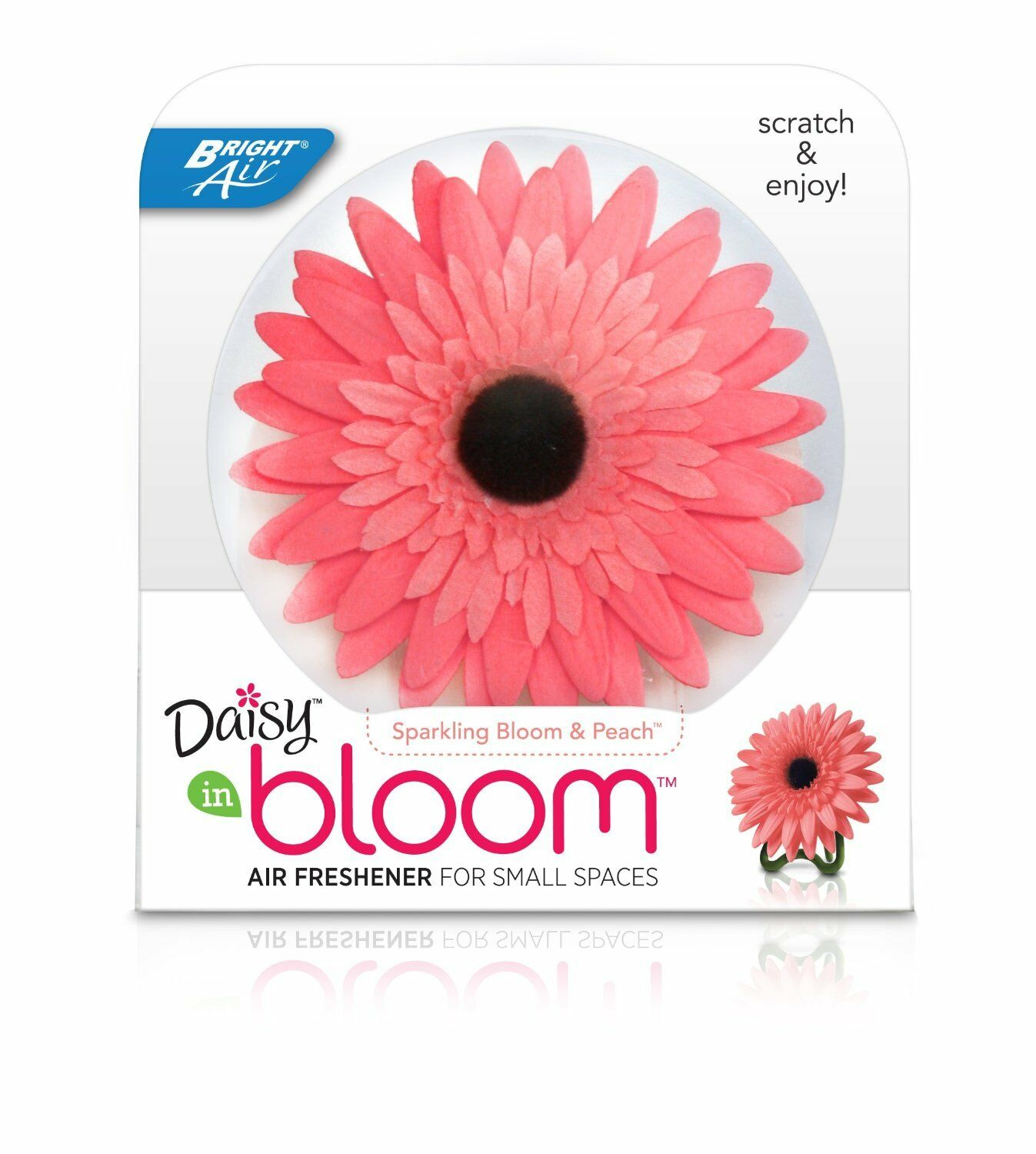 3 in Lot: Bright Air Daisy in Bloom Sparkling Bloom & Peach