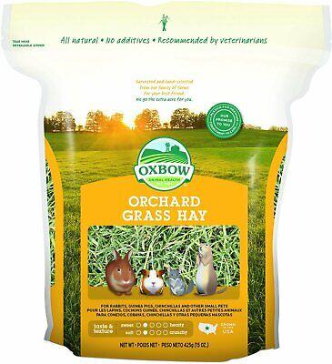 Oxbow Bene Terra Heno para Conejos Cobayas Chinchillas Orchard Hierba Heno 444ml