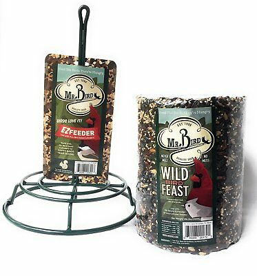 Mr. Bird Wild Bird Feast Large Cylinder with Feeder 4 lbs.