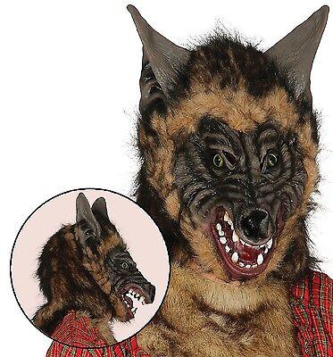 Erwachsene Herren Scary Hairy Wolf Tier Halloween Kostüm Maske Zubehör ()