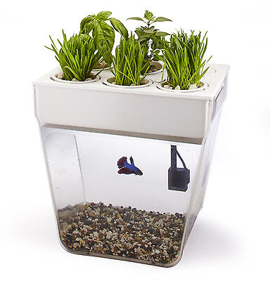 AquaFarm Self-Cleaning Organic Plant Growing Aquaponics Fish Tank / Aquarium Kit