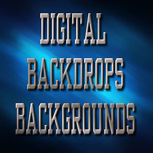 Digital Senior Portrait Backgrounds Backdrops Variety - S
