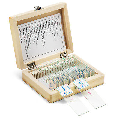 25 Prepared Glass Microscope Slides Biology Lab Specimens Slide W Wooden Box