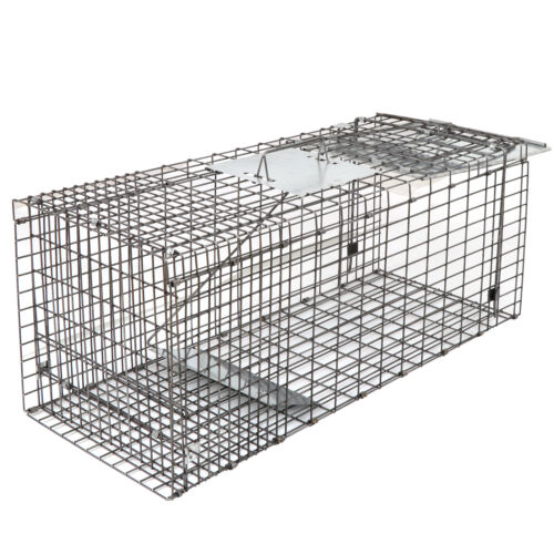 32″ Humane Animal Trap Steel Cage for Live Rodent Control Rat Squirrel Raccon Hunting