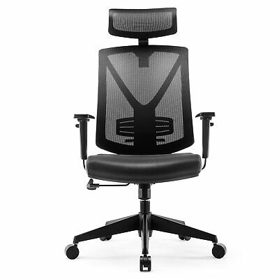 Intey Ergonomic Office Chair High Back Mesh Adjustable Headrest Lumbar Black
