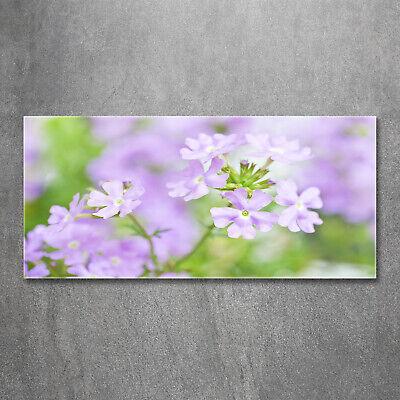 Wandbild aus Plexiglas® Druck auf Acryl 120x60 Blumen & Pflanzen Eisenkraut ()