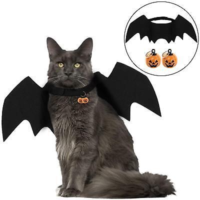 Costume Halloween per Gatto Travestimento con Ali Pipistrello Campanelle Zucca