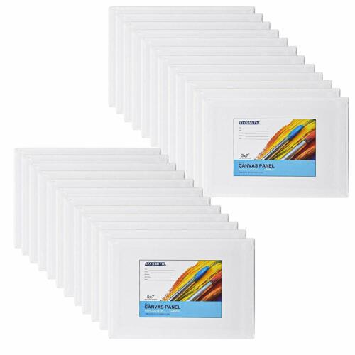 Primed Painting Canvas Panel Boards Valued24 Pack,100% Cotton Canvases,Acid Free