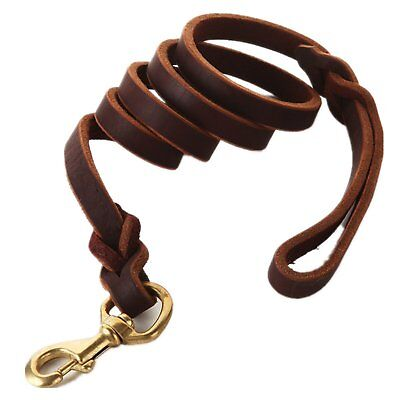 Fairwin Braided Leather Dog Leash 6 Foot - Best Dog Training Leash for