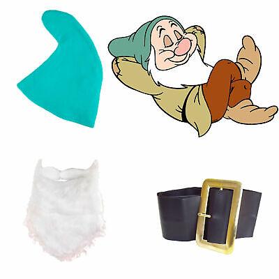 Snow White Seven Dwarfs Fancy Dress SLEEPY SET Hat Beard Belt Fairy Tale - Seven Dwarfs Fancy Dress Costumes