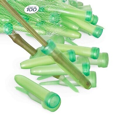 """Floral Water Tubes/Vials for Flower Arrangements by Royal Imports, Green - 3""""..."""