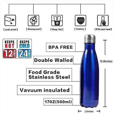 Insulated Water Bottle Double Wall Stainless Steel 17 oz KEEP COLD UP TO 24H ](Dungeon Wall)