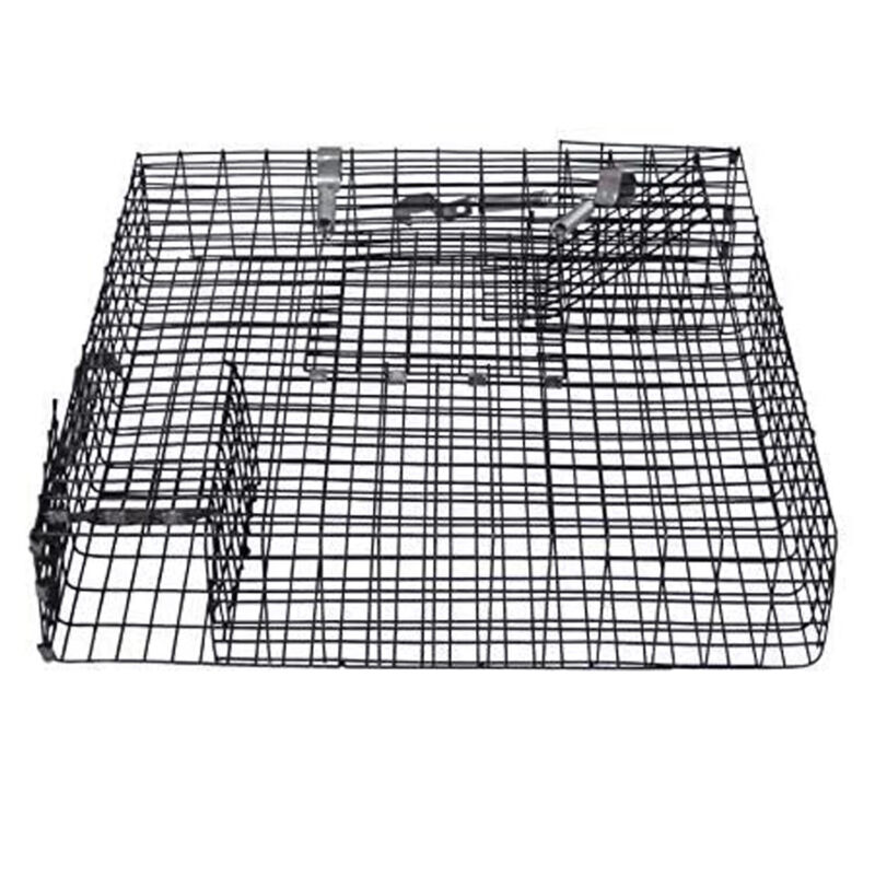 Rugged Ranch CHPTO Live Chipmunk Squirrel Metal 2 Door Trap Cage (Open Box)