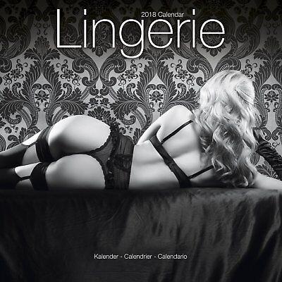 Lingerie   Sexy Pinups   2018 Wall Calendar   Brand New   Hot Girls 801839