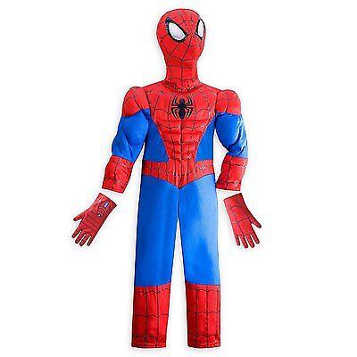 Disney Store Marvel Spider-man Halloween Costume Boy Size 5/6 (Spider Costume For Boy)