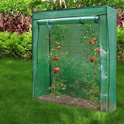 Outdoor Garden Tomato Plant Grow Green House Greenhouse Reinforced Frame & Cover