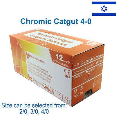 Chromic Catgut 40 Surgical Suture Veterinary Use Trauma Wound Treat 12 Pcs