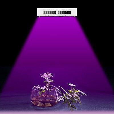 600W LED Grow Light Panel Full Spectrum Medical Indoor Plants Hydro Veg Flower
