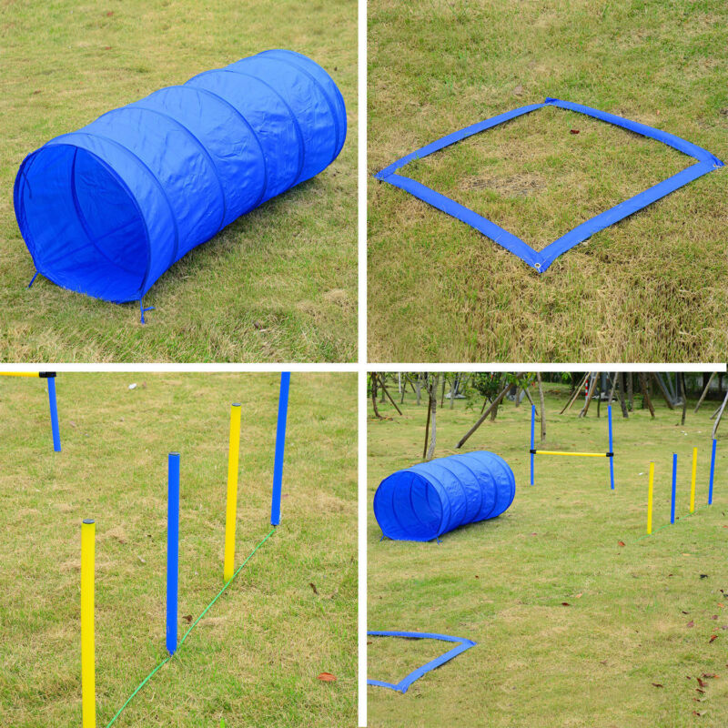 PawHut Pet Agility Training Equipment Dog Play Run Jump (Poles + Hurdle + Tunnel
