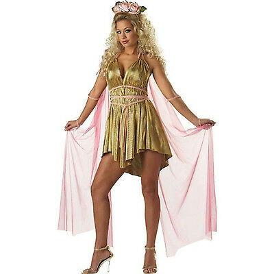 Gold Aphrodite Goddess of Love Greek Adult Sexy Costume Short Dress Large 10-12