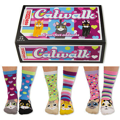 Socken Oddsocks Catwalk Strümpfe Kätzchen Katzen im 6er Set