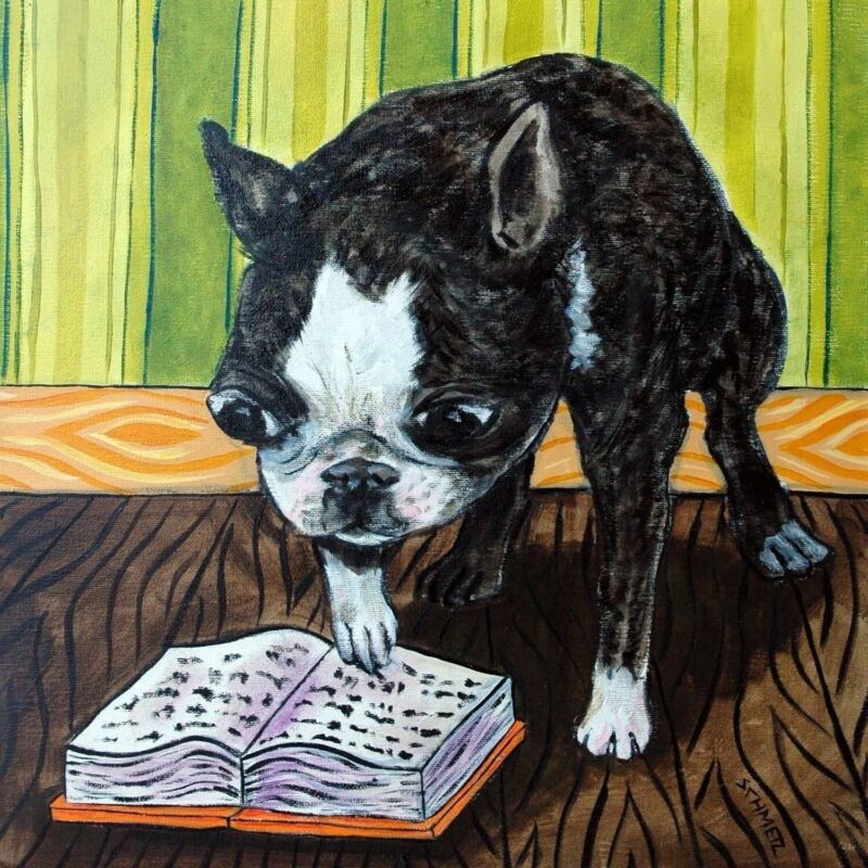 Boston terrier reading at the library dog art tile coaster gift librarian
