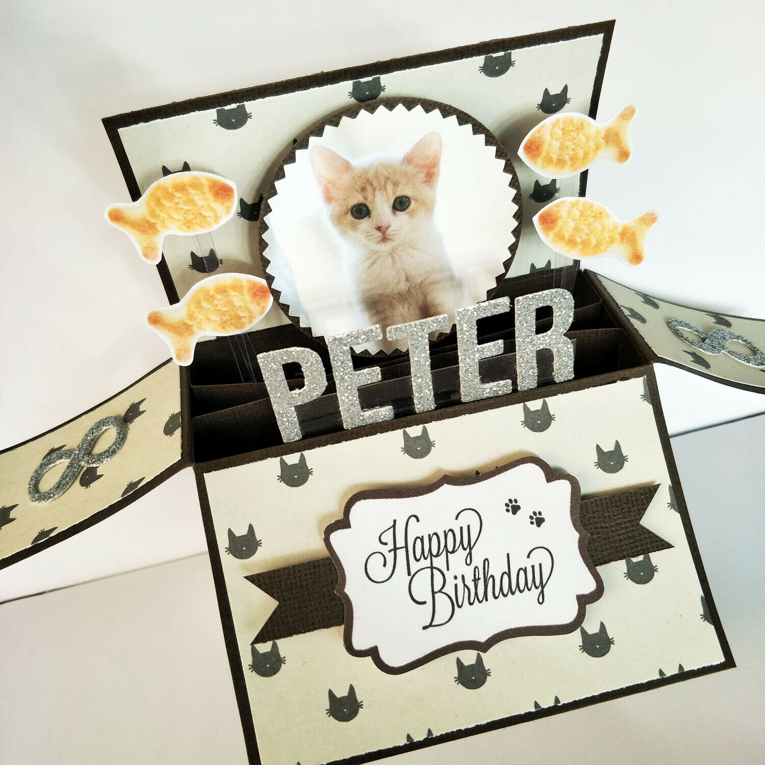 Handmade Name & Age Personalized birthday card pet birthday card cat kitten card - Cat in white background