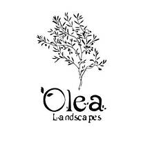 OLEA Landscapes Alexandria Inner Sydney Preview