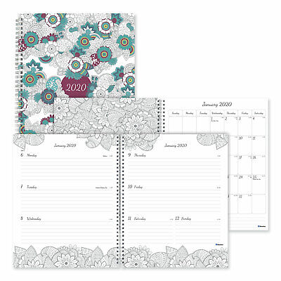 Blueline Doodleplan Weekly/Monthly Appointment Book 11 x 8 1