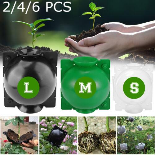 2/4/6 PCS Plant Rooting Device Grow Grafting Box High Pressure Propagation Ball
