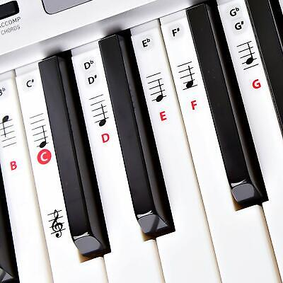 Best Reusable Piano Key and Note Keyboard Stickers for Adults & Children's (Best Musical Instruments For Kids)