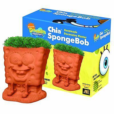 Spongebob Chia Pet Handmade Decorative Planter Easy To Grow