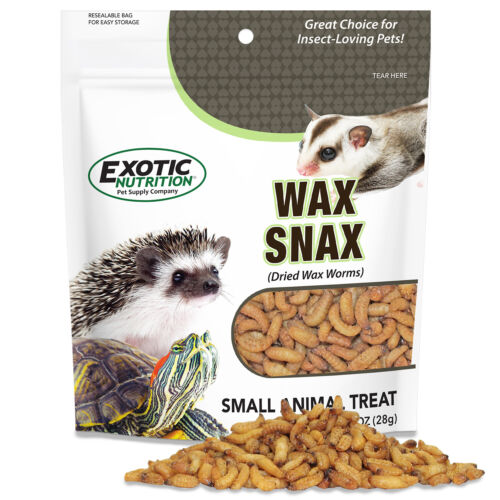 Wax Snax (Dried Waxworms) (1 oz.) - Healthy & Wholesome Treat - Hedgehog, Bird