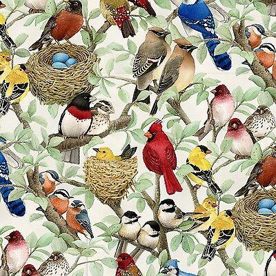 Fabric Wild Birds Allover Coordinate on Cotton by the 1/4 yard Elizabeth