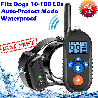 Petrainer Collar Remote Dog Training Rechargeable Waterproof Shock Electric 1000