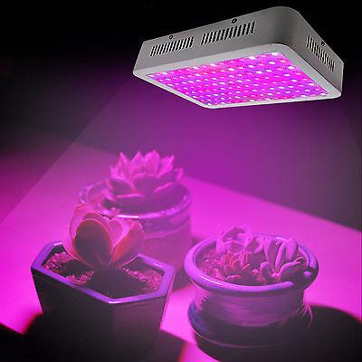 600W Grow Light LED Full Spectrum UV Veg Flower Bloom Hydroponic Plant Panel