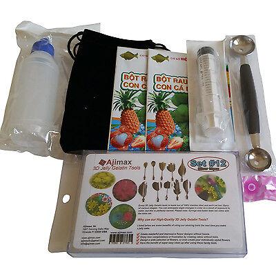 3D Jelly Gelatin Tools Starter Kit Amazing Jelly Jello Art Cake  Kit  12