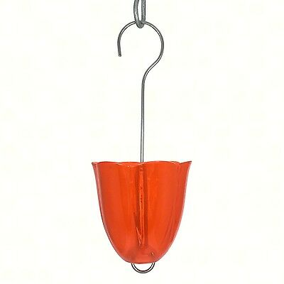 Droll Yankees  Orange Oriole Feeder Protector Birdfeeder Ant Moat, Ant Guard
