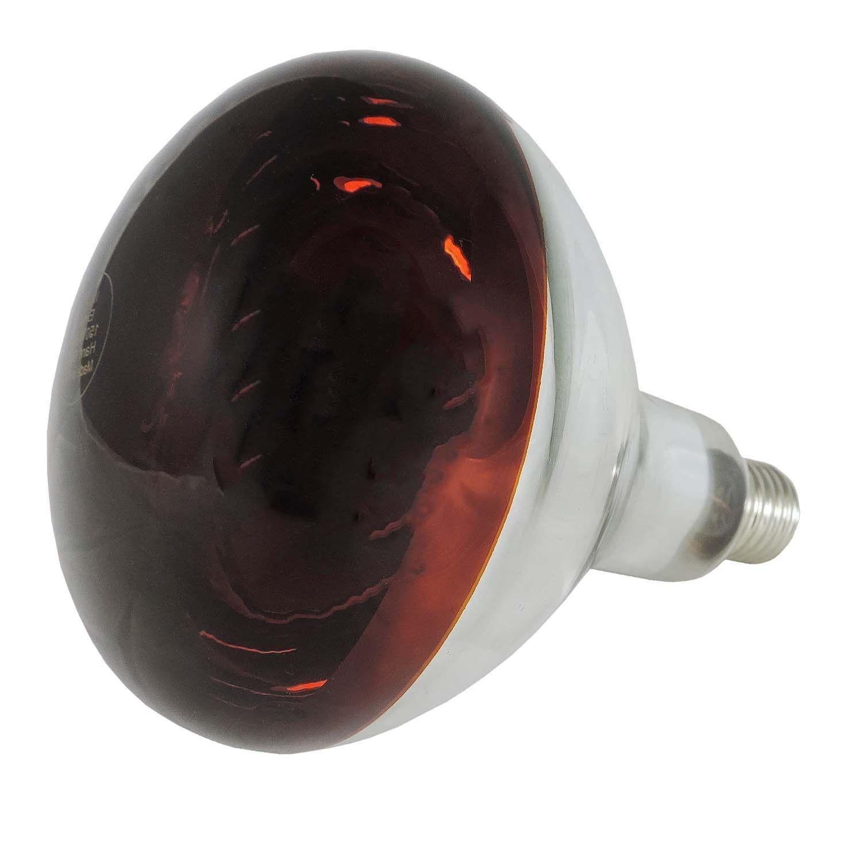 INFRAROTBIRNE ROTLICHTLAMPE FÜR TIERE 150 W oder 250 W Wärmelampe Lampe