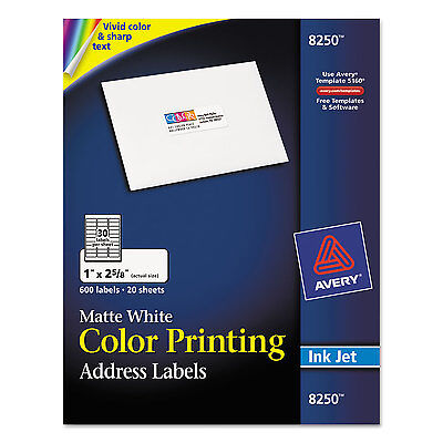 Matte White Mailing Labels (Avery Color Printing Mailing Labels 1 x 2 5/8 Matte White 600/Pack)