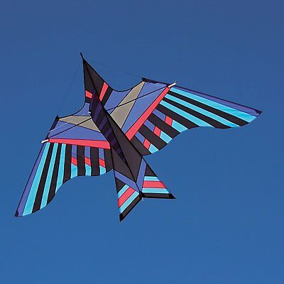 Delta Kite Cloud Bird by George Peters + RipStop Nylon + Carbon Spars + Case