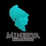 Minerva Medical Supplies