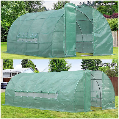 Reinforced Steel Walk-in Polytunnel Greenhouse with Door and Windows (2 Sizes)