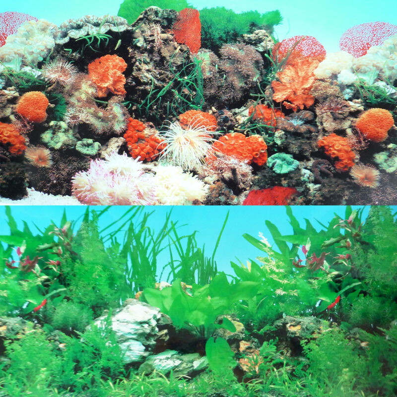 "9090  20"" x 48"" Fish Tank Background 2 Sided Reef Tropical Coral Aquarium"